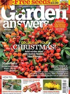 Great Magazines